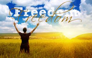 freedomtest - Copy